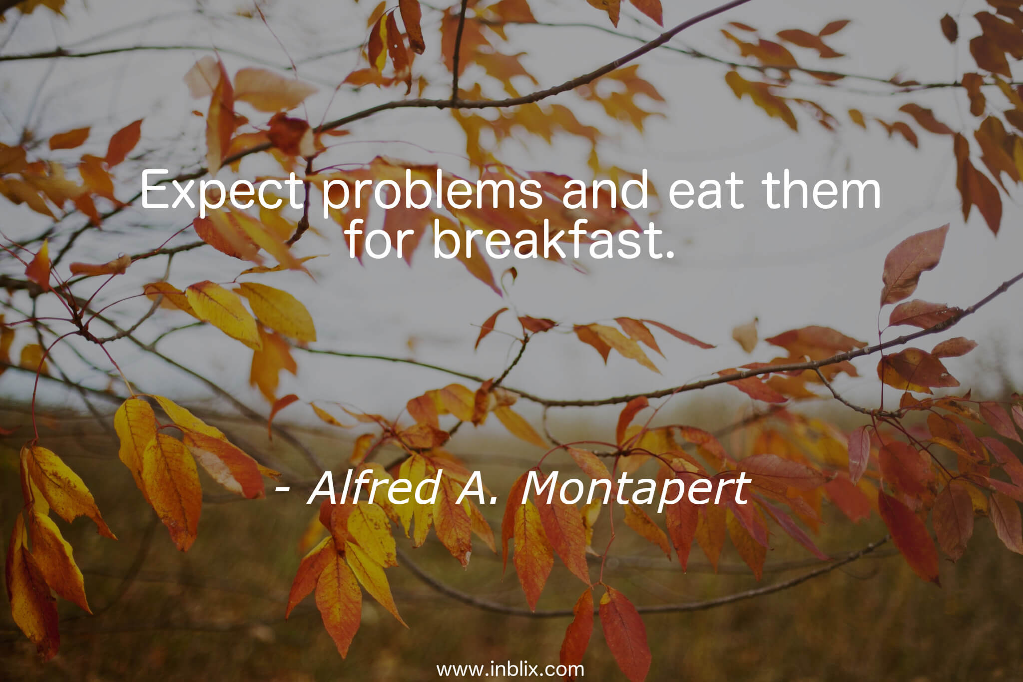 Expect problems and eat them for breakfast.