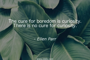 The cure for boredom is curiosity. There is no cure for curiosity.