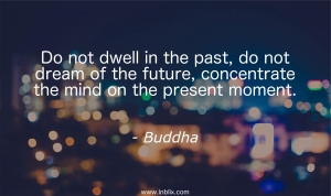 Do not dwell in the past, do not dream of the future, concentrate the mind on the present moment.