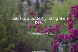 Float like a butterfly, sting like a bee.
