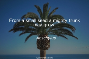 From a small seed a mighty trunk may grow.