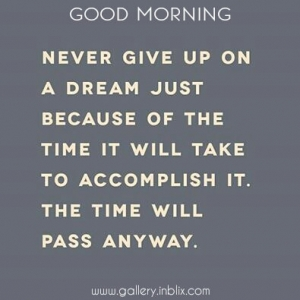 Never give up on a dream just because of the time it will take to accomplish it. The time will pass anyway.