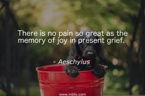 There is no pain so great as the memory of joy in present grief.
