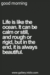 Life is like the ocean. It can be calm or still, and rough ot rigid, but in the end, it is always beautiful.