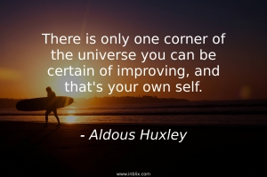 There is only one corner of the universe you can be certain of improving, and that's your own self.