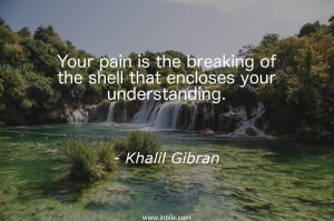 Your pain is the breaking of the shell that enclosing your understanding.