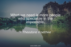 What we need is more people who specialize in the impossible.