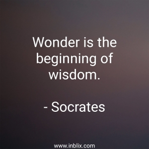 Wonder is the beginning of wisdom.