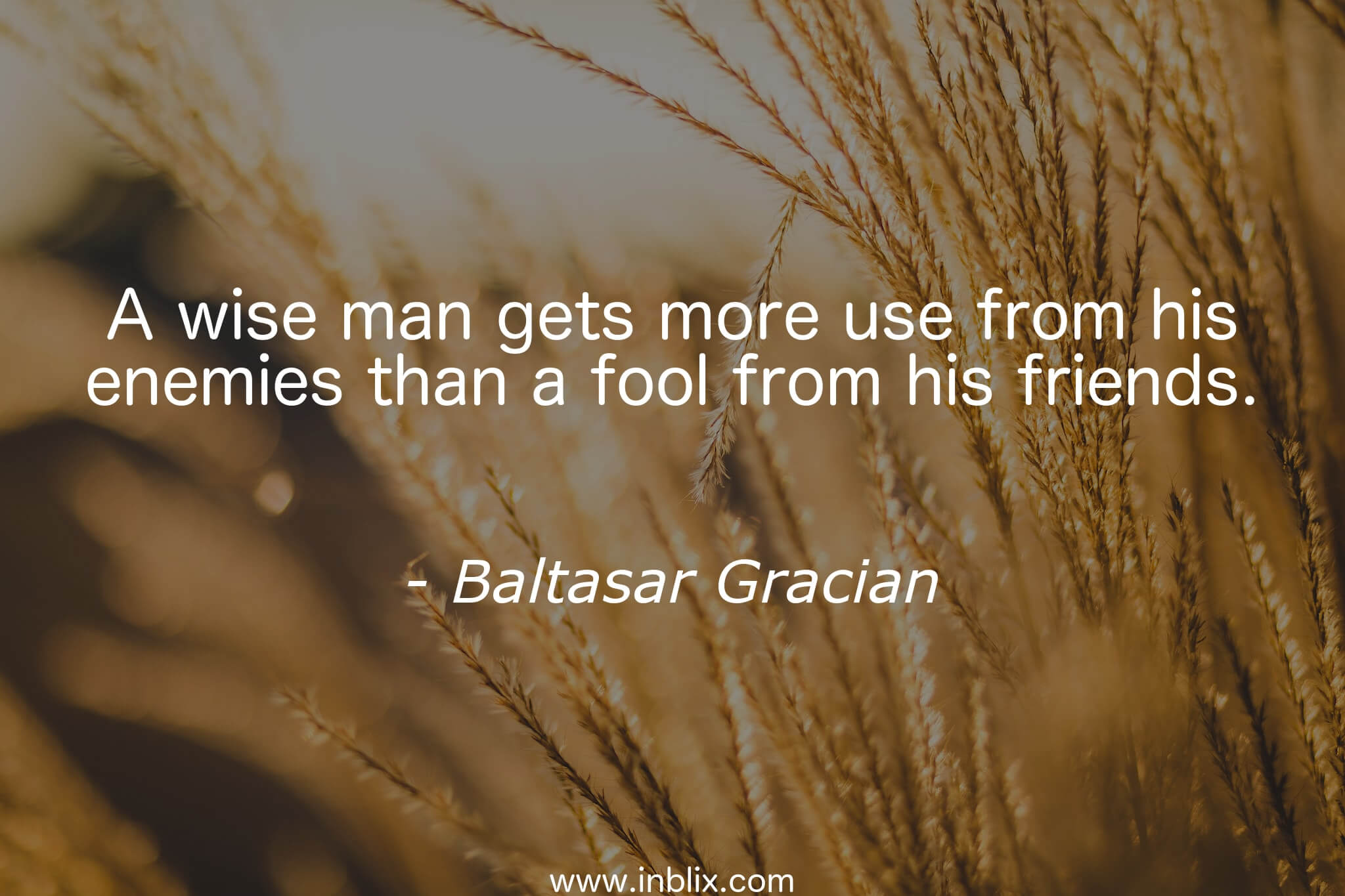 A wise man gets more use from his enemies than a fool from his friends.